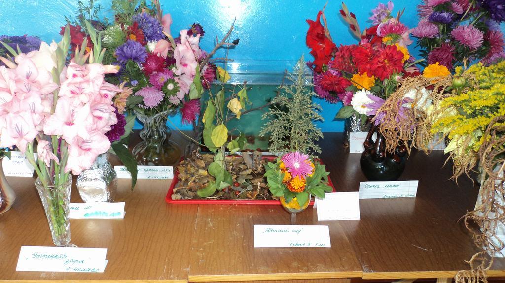 Композиции из природного материала в школу фото